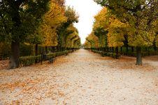 Free Park Schonbrunn Stock Photo - 36364500