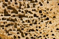 Holes In Sandstone Stock Photography