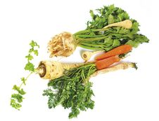 Free Winter Vegetables Stock Images - 36378104