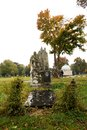 Free Central Cemetery Royalty Free Stock Photo - 36380285