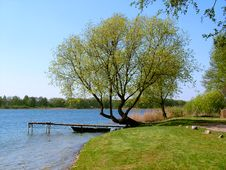Free By The Lake In The Spring. Stock Photo - 36393490