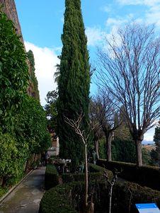 Free Alhambra Mediterranean Formal Garden Stock Image - 36396041