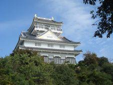 Free Gifu Castle Royalty Free Stock Photography - 3641337