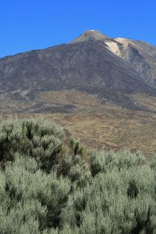 Free Teide Volcano Stock Photography - 3644052