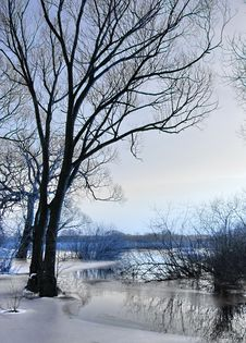 Winter By The River Royalty Free Stock Image
