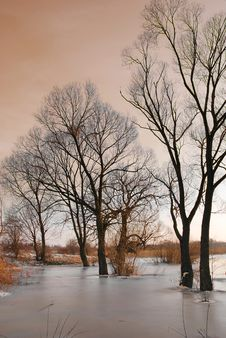 Winter By The River Royalty Free Stock Photos