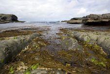 Free Atlantic Ocean Royalty Free Stock Photography - 3645067