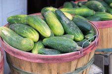 Free Cucumbers Stock Image - 3645111