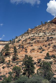 Free Zion National Park Stock Photos - 3645563
