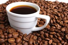 Free Cup Coffee And Coffee Grain Stock Photos - 3645853