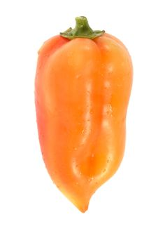 Free Yellow Pepper Stock Images - 3648094