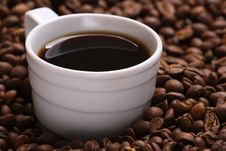 Free Cup Coffee And Coffee Grain Royalty Free Stock Photo - 3648595