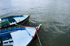 Free Boats Moored Royalty Free Stock Photography - 3648677
