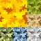 Free Camouflage Set Stock Images - 36429984