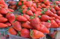 Free Strawberries Stock Photography - 36435152