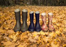 Free Rubber Boots On The Fallen Leaves Stock Photography - 36434392