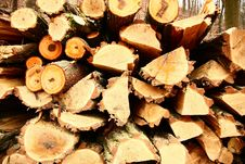 Cut Wood Royalty Free Stock Photo