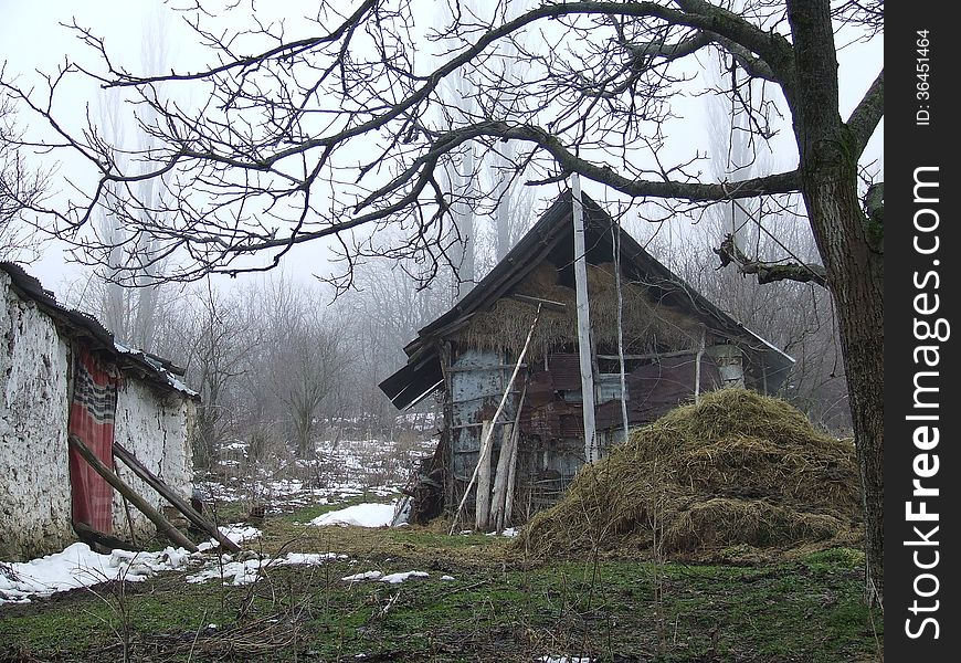 BARN IN THE FOREST