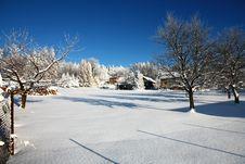 Free Snowy Garden Stock Photo - 36462020
