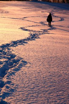 Free Footprints Stock Photography - 36465532