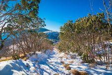 Free Snowy Roan Mountain Stock Photos - 36484233