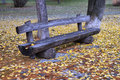 Free Bench In The Park Stock Images - 36490764