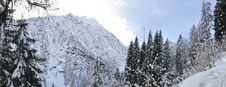 Free Alps Winter Panorama Royalty Free Stock Photos - 36492368