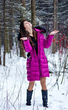 Free Portrait Of Beautiful Woman In Snow Winter Forest Royalty Free Stock Photo - 36499935
