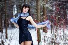 Free Beautiful Woman With Bright Tinsel In Winter Forest Royalty Free Stock Photo - 36499965