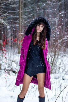 Portrait Of Beautiful Woman In Snow Winter Forest Stock Images