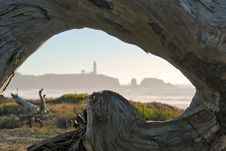 Free Driftwood Frame Stock Photo - 3651900