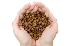 Free Handful Of Coffee Beans Stock Photo - 3652200