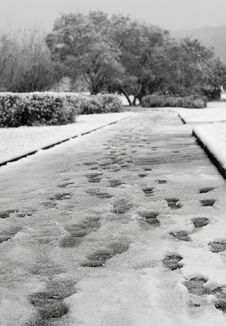 Free Footpath, Snowfall & Traces Stock Images - 3652814