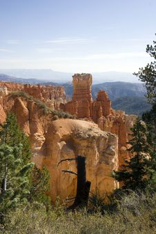 Free Bryce Canyon National Park, Utah Royalty Free Stock Photos - 3653578