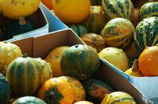 Small Pumpkins Stock Photos
