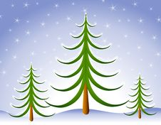 Free Winter Christmas Tree Scene In Snow Stock Photography - 3655362
