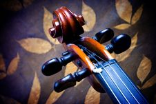 Free Violin Details Royalty Free Stock Photo - 3655555
