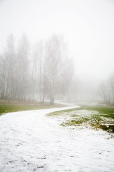 Free Fog In The Park Stock Images - 3656794