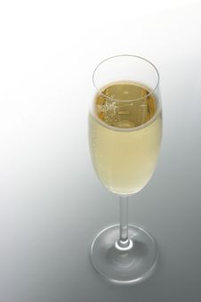 Free Champagne Glass Stock Images - 3657474