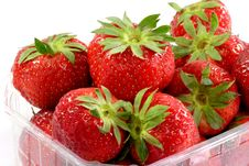 Free Fresh Strawberries Royalty Free Stock Photos - 3657808