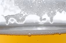 Free Detail Of Beer In Glass Stock Image - 3659361