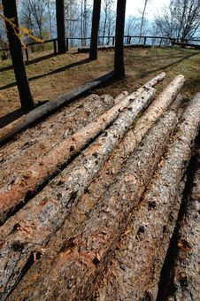 Free Stack Of Wood Royalty Free Stock Photos - 3659488