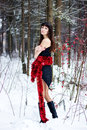Free Beautiful Woman With Bright Tinsel In Winter Forest Royalty Free Stock Image - 36500056