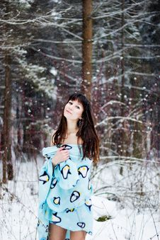 Beautiful Woman Under Warm Cute Wrap In Cold Snow Forest Royalty Free Stock Photos
