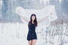 Beautiful Bride Under Veil On White Snow Background Royalty Free Stock Photos