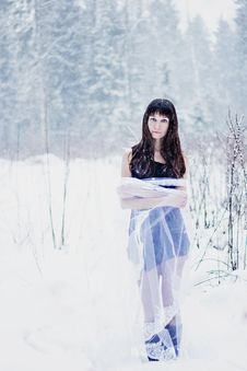 Free Beautiful Bride Under Veil On White Snow Background Stock Photography - 36500292