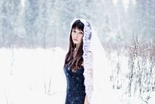 Beautiful Bride Under Veil On White Snow Background Stock Image