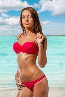 Free Beautiful Woman Wearing Bikini Stock Image - 36515621