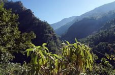 Mountain Landscape, The Himalayas Royalty Free Stock Photography