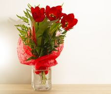 Free Red Tulips Royalty Free Stock Photo - 36534095
